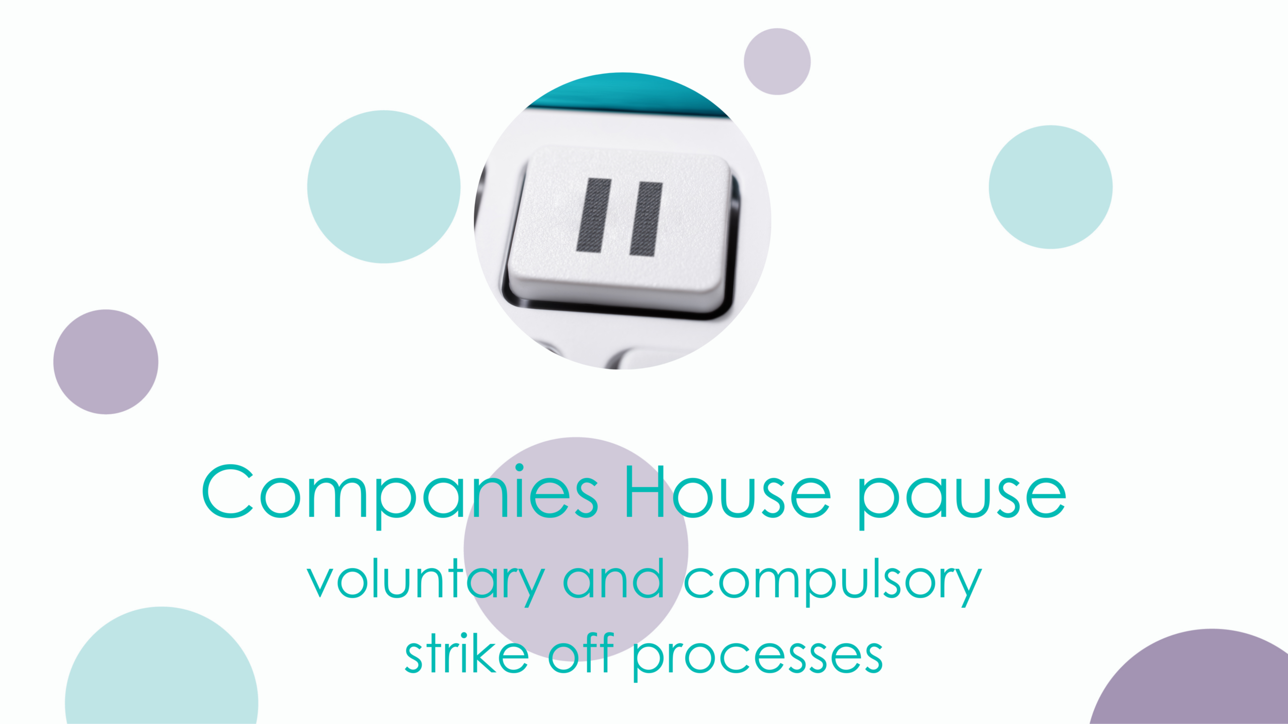 Companies House pauses voluntary and compulsory strike off processes for one month.